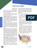 30 - Fisiologia Humana - Aparelho Reprodutor Feminino