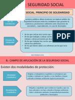 Tema Seguridad Social 3