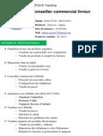 CV TEFIANI YASSINE Commerce