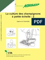 La culture des champignons à petite échelle_partie 2
