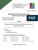 Mémoire Master - Etude Des Performances Du Procédé de Liquéfaction Du Gaz Naturel APCI (C3MR)-Converti