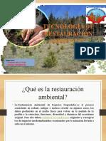 Tecnología de Restauración Ambiental (Grupo 3)-1
