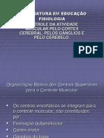 Controle neorumuscular