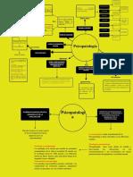 Actividad 1 Psicopatologia Electiva V