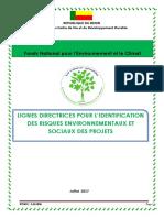 lignes-directrices-lindetification-des-risques-environnementaux-et-sociaux