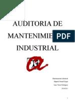 Auditoria mantenimiento