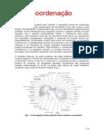 Apostila Coordenação Motora 202020