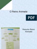 aula7ano-reinoanimalia-131117121711-phpapp01