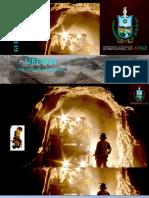 2 GUIA USUARIO-CARTILLA 2_Como ACCEDER-SIREMIN
