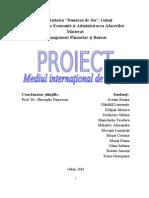 Proiect M.I.A. - Multiplicarea Banilor [ MFB - Rara Avis Team ]
