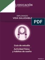 DVS Modulo4 Guia