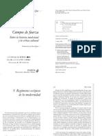 Jay, Regímenes escópicos de la Modernidad - Campos de fuerza, entre la historia intelectual y la crítica cultural