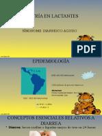 S. diarreico agudo