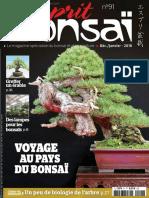Esprit Bonsai n°91 - Décembre 2017