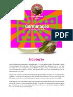 04- Germinação