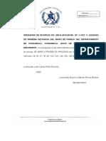 RESOLUCION DE TRAMITE PRUEBA