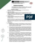 1.TDR_IE 0135 TORIBIO RODRIGUEZ DE MENDOZA