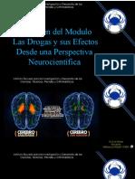 DROGAS Y CEREBRO - LUIS BRAVO