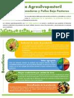 Resumen-premio-sostenibilidad