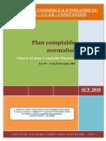 173386641 Plan Comptable Normalise Scf Ccir