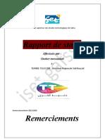 rapport de stage 2020 (etude de cas) chaker messaoudi