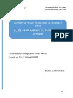 Les Paradoxes Du Chômage en Afrique by Georges ANABA