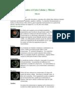 Guía sobre el Ciclo Celular y Mitosis