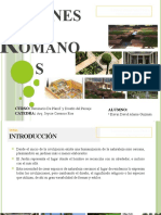 246150104 Jardines Romanos
