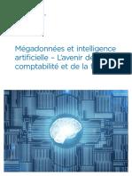 02041-RG-Megadonnees-et-intelligence-artificielle-Lavenir-comptabilite-et-finance