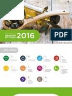 team_informe-de-gestion-2016