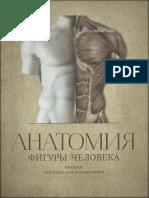 Mogilevtsev Anatomia Figury Cheloveka Kratkoe Posobie Dlya Khudozhnikov