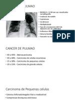 S6 - CANCER DE PULMAO PDF