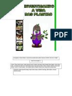 Investigando a Vida Das Plantas