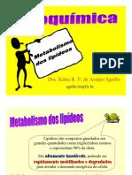 Aula Bioquimica_metabolismo de Lipideos