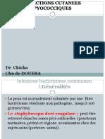 infection résumé - Copie (1)