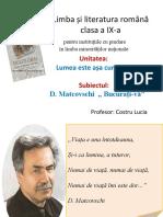 limbasiliteraturaromanaminoritatinationale-9-CostruLucia-ro