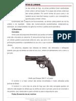 30488361-Armas-de-Fogo-Curtas-e-Longas