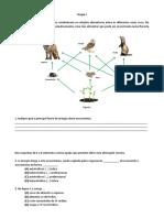 Teste_ciencias_8_ano_fluxos_de_energia_equilibrio_dinamico_ecossistemas