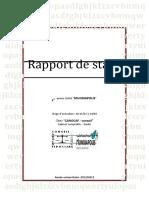 PDF Rapport de Stage