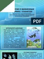 планктон Копейкин А.