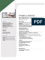 CV PAMELA RODRIGUEZ