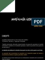 MORFOLOGÍA-GENERAL-SIMETRIA