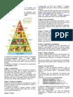 Pirâmide Alimentar 8 ano