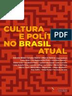 Cultura-política no Brasil atual