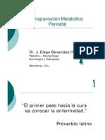 programacion_metabiloca_perinatal