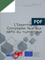 PFE 5 ENJEU Brochure-Fédérale-n°32-L'Expertise-Comptable-face-aux-défis-du-numérique