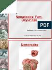 Veterinary/ Parasito /Oxyridae