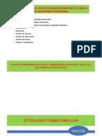 Instrumentos de Seguridad Ciudadana. D.M.S. (1)