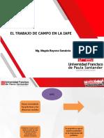 EL TRABAJO DE CAMPO EN LA IAPE (2)