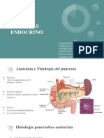 Páncreas endocrino